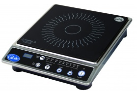 Globe 120V Countertop Induction Range